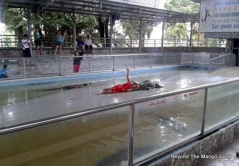 Pattaya-Crocodile-Show