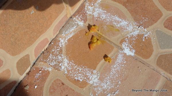 ant-chalk-experiment