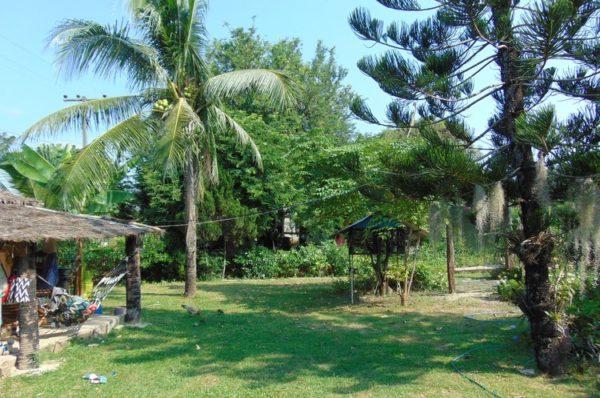 Beautiful green Thai village garden
